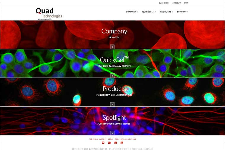 Quad Technologies Website